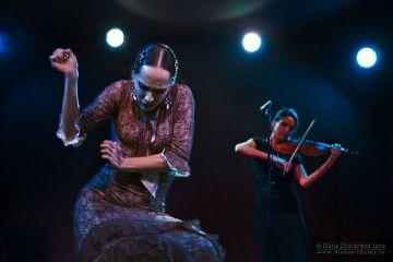 002_projekt_flamenco_01